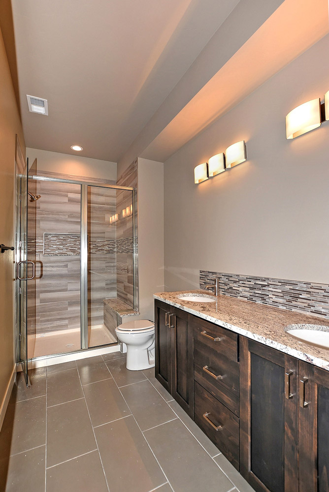 Basement bathroom vanity and shower